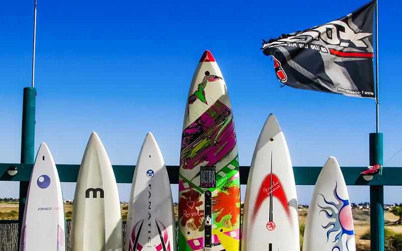 SURF ROCK & BEACH POP