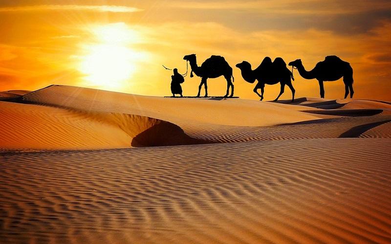 ARABIAN & MIDDLE EAST