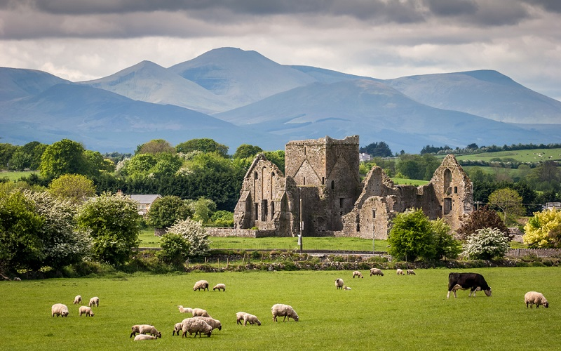 CELTIC, IRISH, SCOTTISH, TRADITIONAL UK